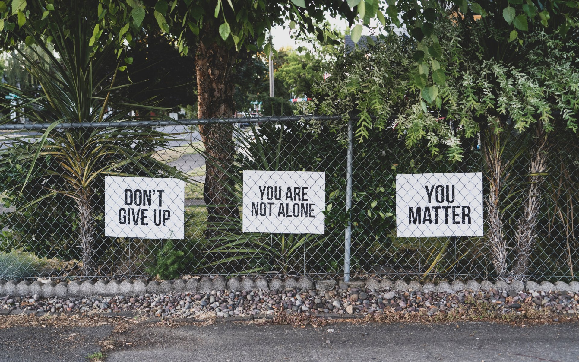 Metal Garden Fence With Signs Which Have Positive Messages On Them